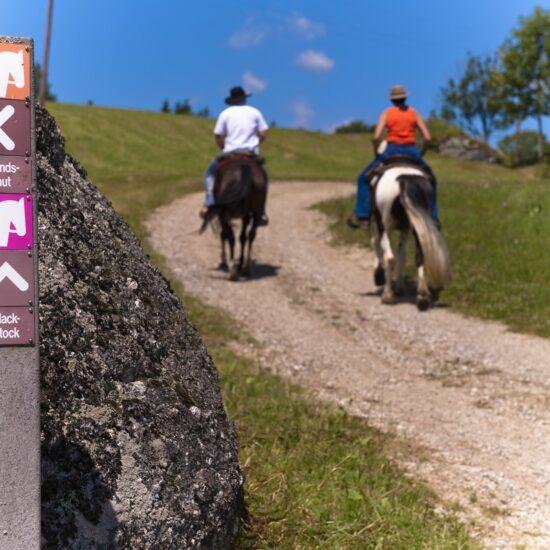 Wochenurlaub mit eigenem Pferd