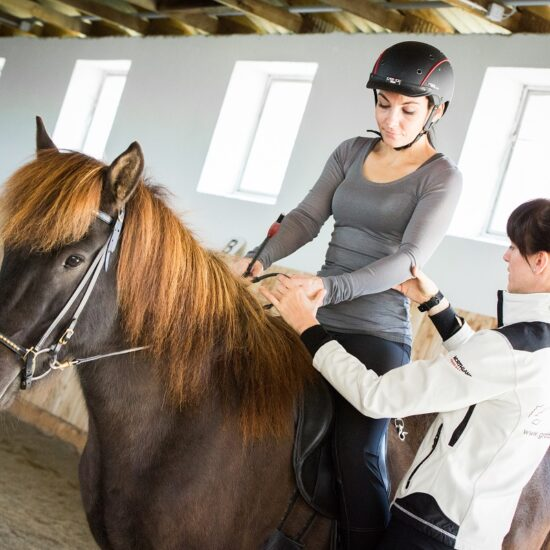 Centered Riding®-Instructor Level 1 mit Peggy S. Brown